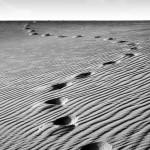 Deserto di sabbia
